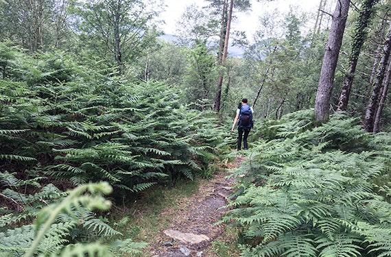 Wandern in Edenkoben (3 Nächte)