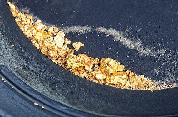 Goldwaschen bei Karlsruhe