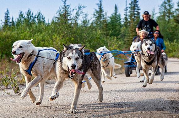 Finnland Actionreise für 2 (4 Tage)