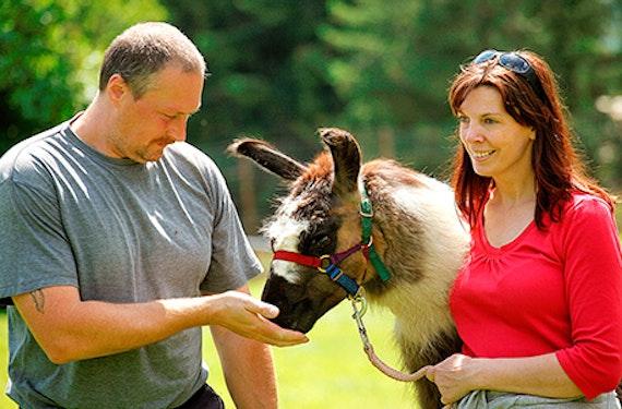 Aktiv-Kurzurlaub in der Steiermark für 2