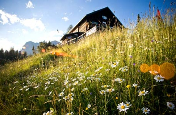 Berghütten-Kurzurlaub in der Steiermark für 2