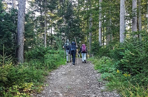Bogenschießen Bad Peterstal-Griesbach