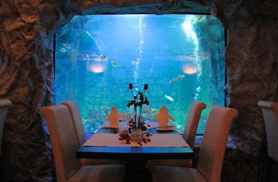 Gourmet-Menü im Unterwasser-Restaurant in Neuwied für 2