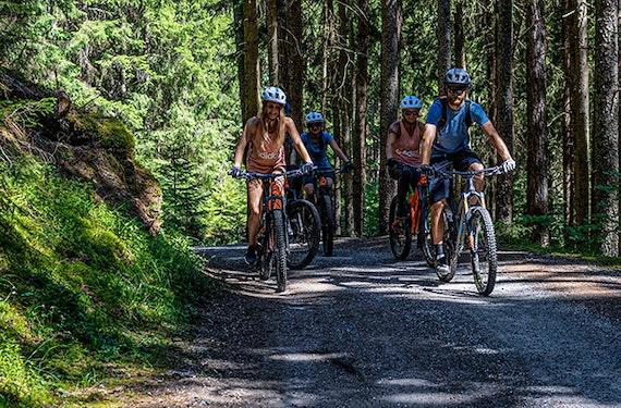Hochseilgarten & E-MTB Tour im Ötztal