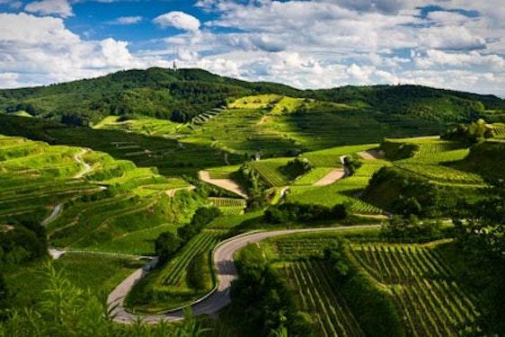 Fackelwanderung & romantisches Käsefondue im Weinberg für 2