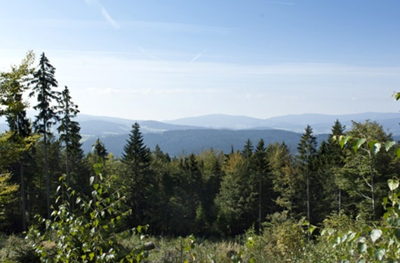 Familienurlaub Bayerischer Wald für 4