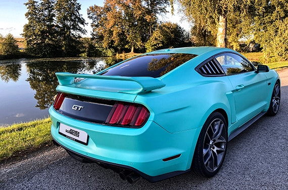 Ford Mustang Tagestour