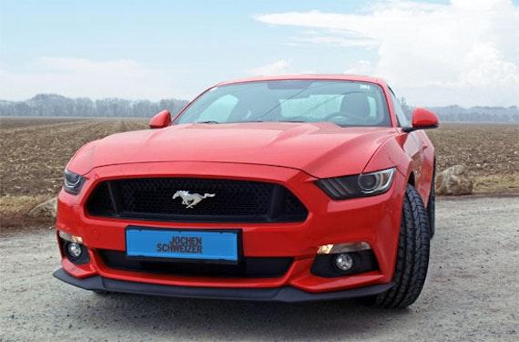 Ford Mustang fahren bei Wien (4 Std.)