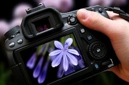 Privater Fotokurs online