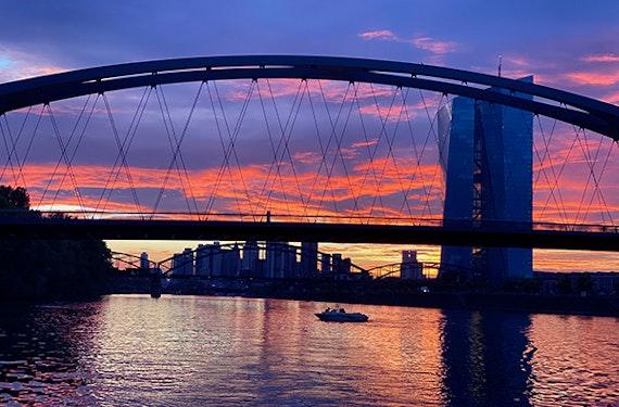 Fotosafari Frankfurt (2 Stunden)
