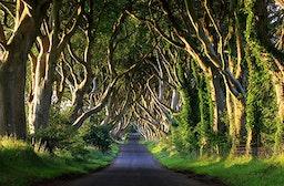 Game of Thrones Reise Nordirland (4 Tage)