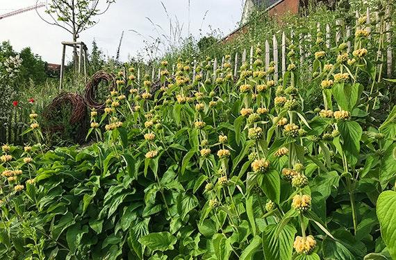 Gartenkurs in Leonberg