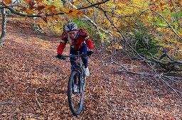 Geführte Mountainbike Tour Bielefeld (2,5 Std.)