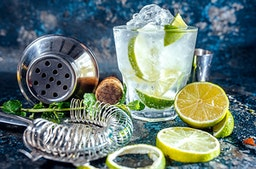 Gin Seminar