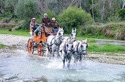 Kutschenreise in der Toskana (8 Tage)
