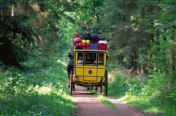 Postkutschfahrt in der Lüneburger Heide