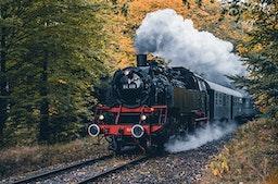 Historische Dampf- und Dieselfahrt (2 Std.)