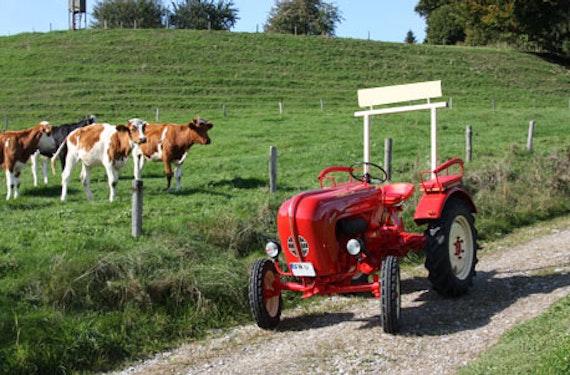 Oldtimer-Traktor fahren am Bodensee