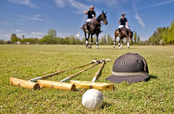 Polo-Schnupperkurs für Einsteiger