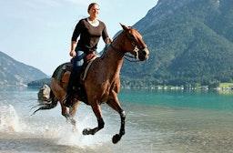 Westernreiten & Wellness am Achensee