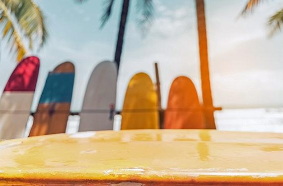 Surfboard selber bauen (3 Tage)