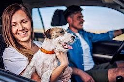 Urlaub mit Hund Alpbachtal für 2 (2 Nächte)