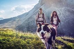 Kurzurlaub mit Hund in Südtirol für 2