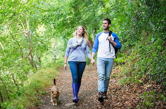 Urlaub mit Hund in Walsrode für 2