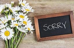 Erlebnis-Mix 'Entschuldigung'
