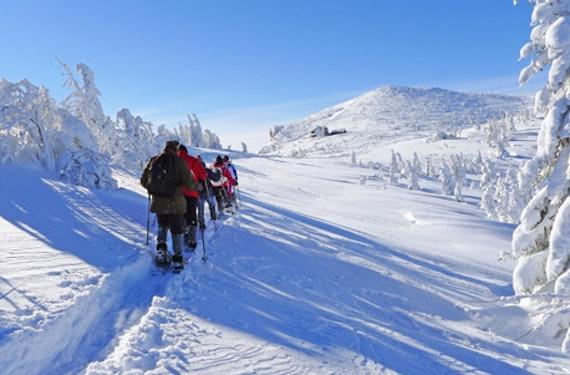 Schneeschuh-Tour auf den Wiener Hausbergen