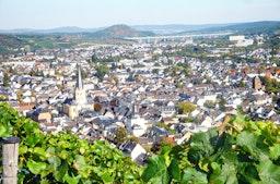 Weinbergwanderung in Bad Neuenahr-Ahrweiler