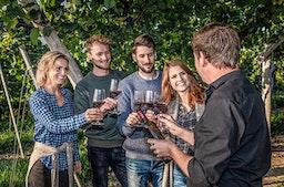 Weinbergwanderung & Weinprobe Raum Heidelberg für 2