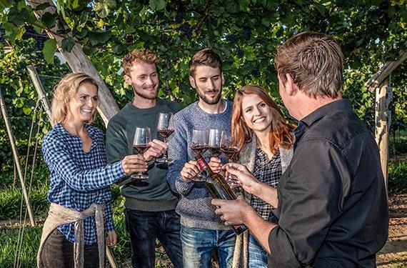 Ein Tag auf dem Weingut mit Übernachtung in der Pfalz für 2