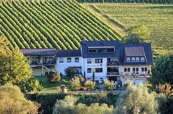 Weinreise Bernkastel-Kues für 2 (2 Nächte)