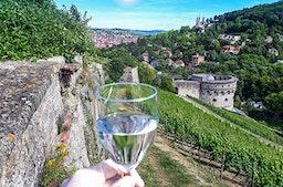 Weinverkostung und Rallye Würzburg