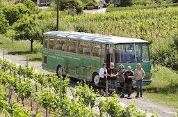 Weinausflug & Schifffahrt in Trier