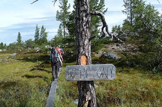 Wildnis-Urlaub in Schweden inkl. Anreise (10 Tage)