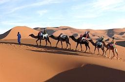 Wüsten-Expedition in der Sahara