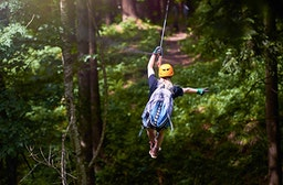 Zipline-Park im Pfälzerwald
